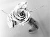 rosas-de-hojas-secas-1-700